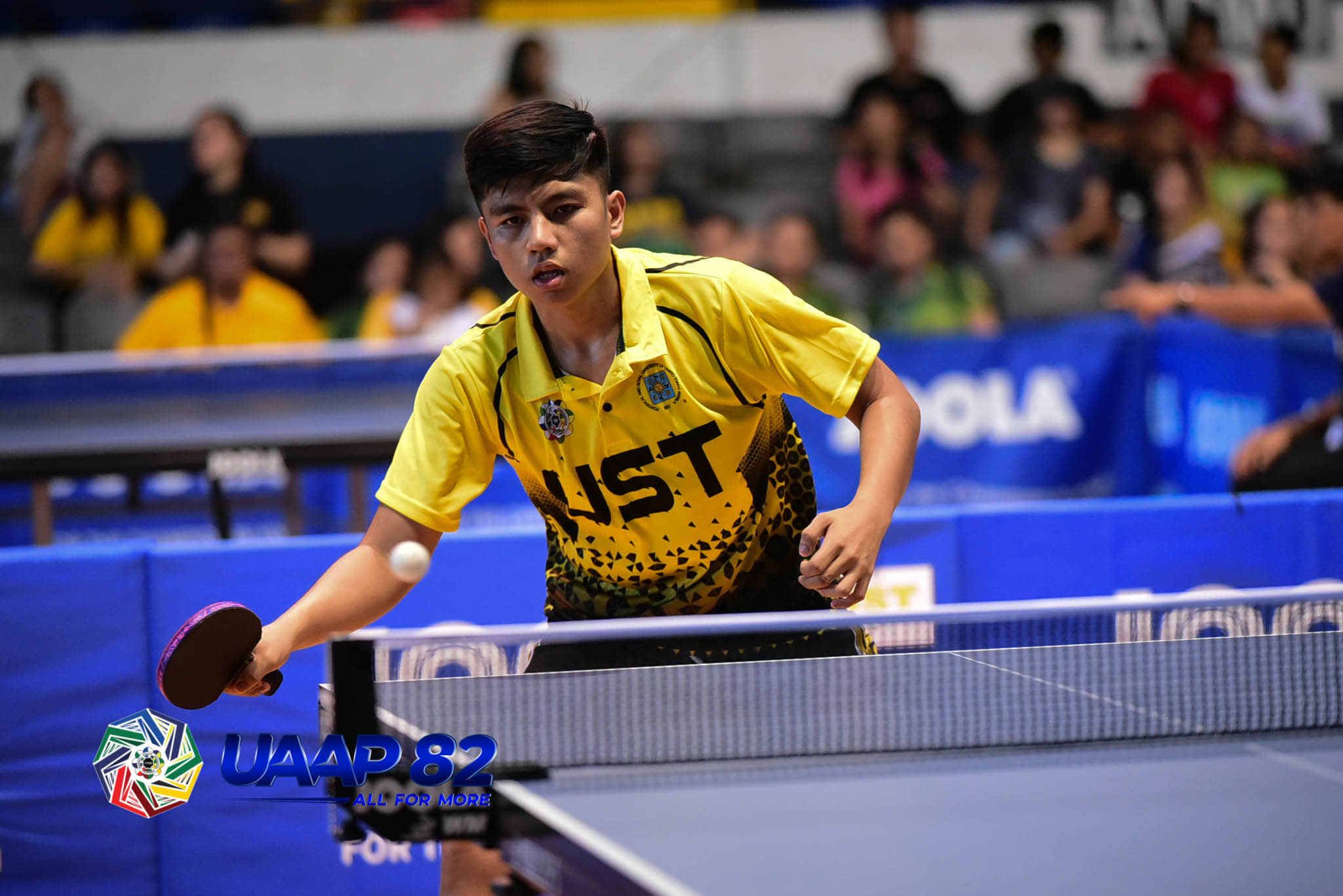 Tiebreaker Times UST, NU stay perfect ahead of showdown ADMU AdU DLSU FEU News NU Table Tennis UAAP UE UP UST  UST Men's Table Tennis UP Men's Table Tennis UE Men's Table Tennis UAAP Season 82 Men's Table Tennis UAAP Season 82 Romualdo Ramiro Prince Garcia NU Men's Table Tennis Mcleen Dizon Harold Celeridad Franz Mogol FEU Men's Table Tennis DLSU Men's Table Tennis Ateneo Men's Table Tennis Alvin Sevilla Adamson Men's Table Tennis